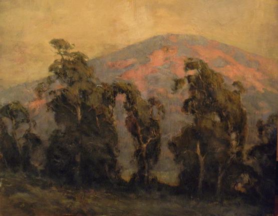 Turnerhillsideeucalyptussm