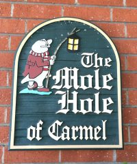 The Mole Hole of Carmel