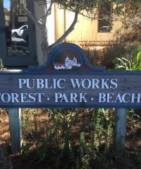 Public Works – Forest and Beach